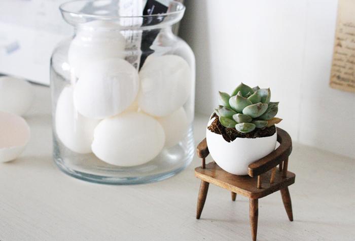 捨ててしまいがちな卵の殻を使ったアレンジ。ぷっくりとした多肉植物と丸くてコロンとした卵の形がお似合いです。殻のわれ具合も楽しみながら、いくつか並べて飾ってもいいですね。