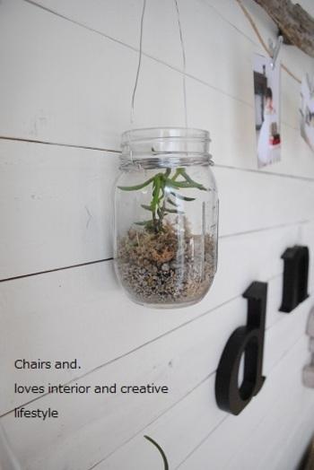 多肉植物はテラリウムにしても素敵。こちらは、ガラスジャーをワイヤーでぐるぐると巻いて、壁に吊るしてディスプレイしています。
