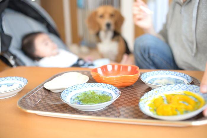 味覚に敏感な赤ちゃんには濃い味付けや化学調味料は厳禁。舌を育んでいくために、離乳食作りに天然だしは必須です。まずは椎茸や昆布、野菜だしからはじめましょう。
