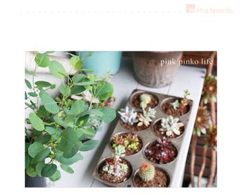 100均の製氷器に小さめの多肉植物を飾るアイデア。ミニチュアのような可愛さのあるインテリアになりますね。