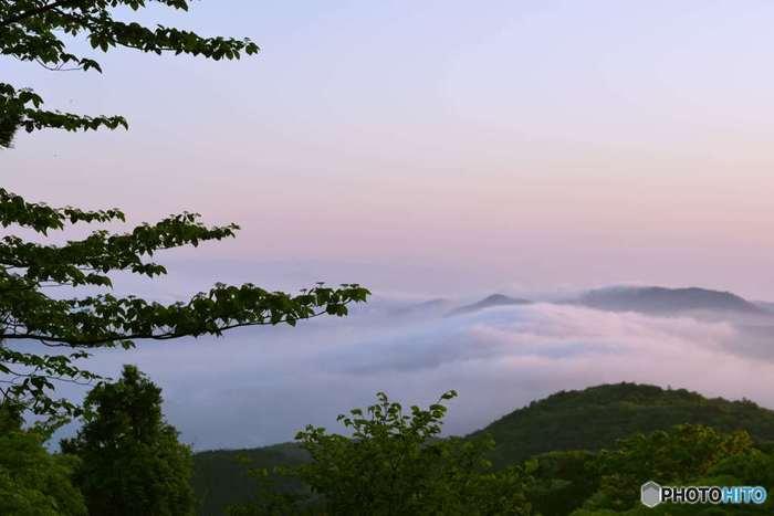 天候に恵まれると天城山の山頂からは、雲海を見ることができます。
