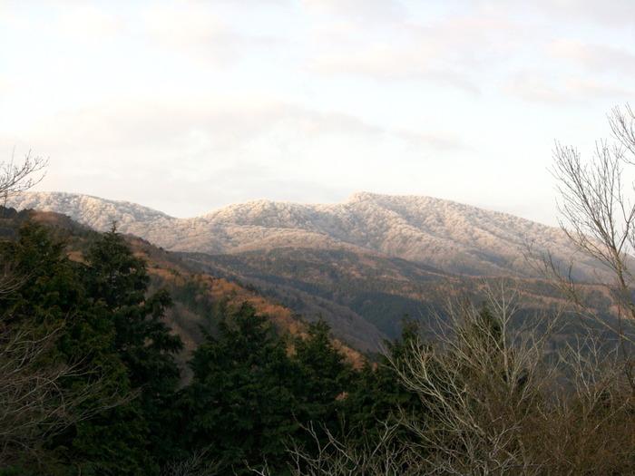 川端康成の小説「伊豆の踊子」にも登場する天城山は伊豆半島中央部に広がる山々の総称で、日本百名山の一つに数えられています。