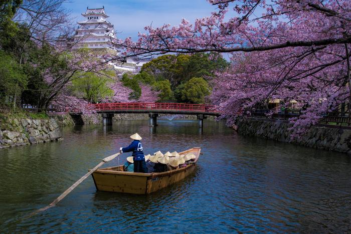 姫路城を取り囲むお濠では、和舟が出航しています。網代傘を被り、ガイドの話を聞きながら、船頭がゆっくりと漕ぐ舟に揺られながら、のんびりとお城を眺めてみるのもおすすめです。