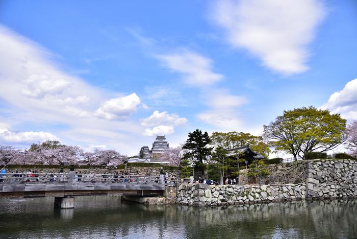 姫路城の濠に架けられた風情ある木造橋・桜門橋は、姫路市街地と姫路城を結ぶ橋です。桜門橋を渡ると大手門があり、世界遺産・姫路城へと私たち観光客を誘っています。
