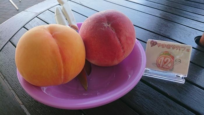 バイオ技術による自然浄化作用「BMW技術」を駆使し、丹精込めて育てた桃が頂けます。