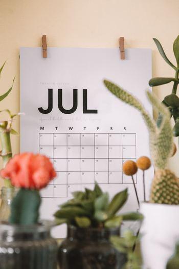 「1か月ごと」「○○旅行」など、自分なりの区切り方を決めて、それに則って写真をフォルダ分けしましょう。  フォルダ分けする時点では、写真は取捨選択しないでOK。「2019年8月」なら、その1か月に撮影した写真をドカンとまとめてフォルダに入れてしまいます。
