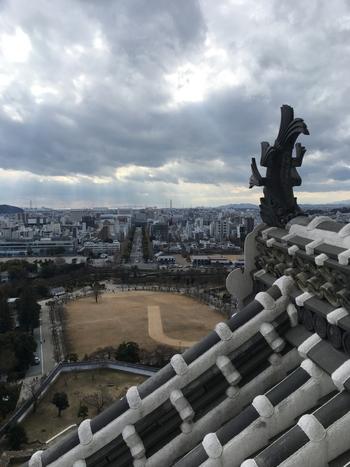 急勾配の階段を登りきると、大天守の上層階から姫路市街地を一望することができます。眼前に見える鯱、白漆喰が塗られた瓦屋根の先に、三の丸広場、姫路市街地を遠望できる気持ち良さは格別です。