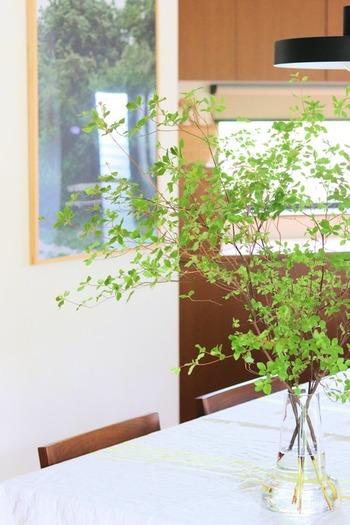 テーブル上に植物があると爽やかに演出できますね。枝ものを大胆に取り入れれば、お部屋の体感温度がぐっと下がりそうです。軽やかなガラスベースに水が入っている様子も涼し気ですね♪季節の植物をぜひ取り入れて。