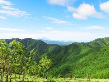 山岳信仰という言葉がある様に、山はもともと神聖な場所で、修行僧たちがご神体を拝むために登ることはあっても、普段は一般の人がむやみに立ち入ることは許されていませんでした。そんな山に、夏の一定期間に信仰行事として山に入ることが許される様になったのが山開きの起源とされています。