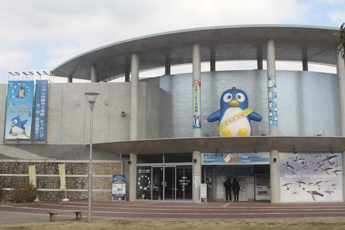 「長崎ペンギン水族館」は、世界一のペンギン飼育種類を誇る水族館。全18種類のうち、9種類180羽以上のペンギンがいます。