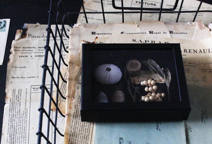 空き箱の蓋の中央はガラスではなく、クリアの下敷きを使っています。完成品はまるでガラス蓋のような標本箱に。高級感あふれるボックスは、コレクションやアクセサリー入れとして使えます。