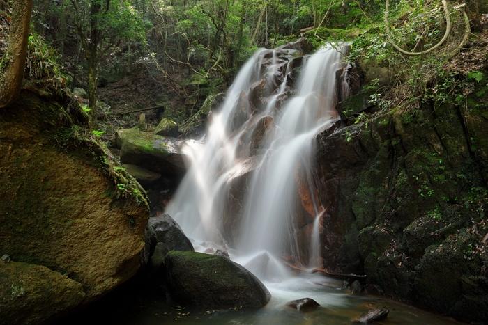 鶏鳴の滝は落差13メートル、滝幅11メートルの滝です。この滝には不思議な伝説があります。鶏鳴の滝の東側に位置する笹ケ岳の山頂にある古い寺跡には、元旦の朝に黄金の鶏が現れ、新年の幸せを告げると言い伝えられています。そのため、この滝は、「鶏鳴の滝」と名付けられました。