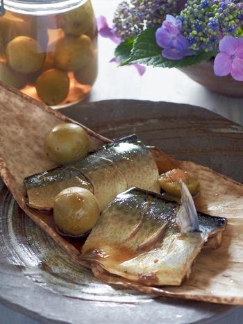 梅のピクルスと、そのピクルス液を使って作る、鯖の梅煮。さっぱりと臭みのない煮魚に仕上がるので、鯖の煮付けが苦手という方も一度試してみてはいかがでしょうか。