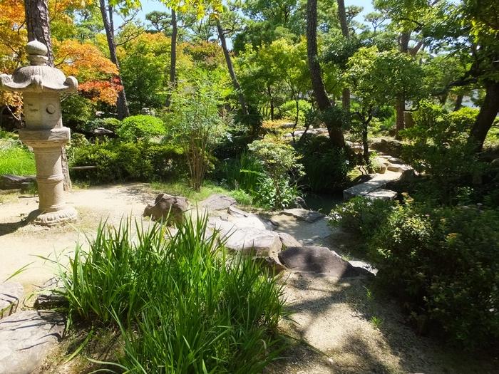 造られてから100年以上の時を経ても美しい日本庭園の魅力は色褪せることなく、市民や観光客の憩いの場として愛され続けています。