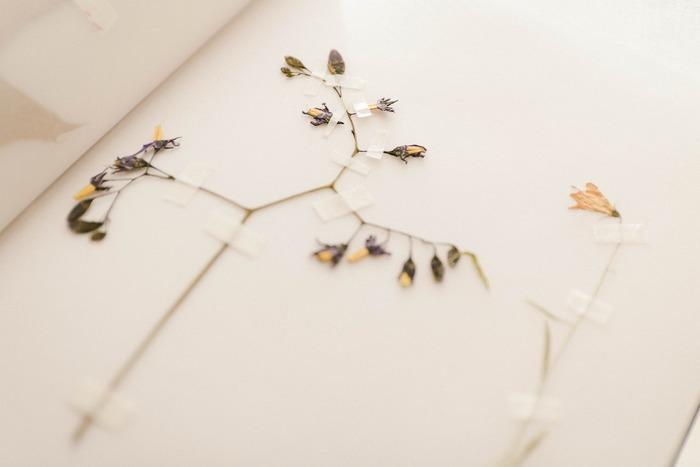 一番簡単で、可愛く仕上がるのが、マスキングテープで1輪ずつ壁に飾る方法。オシャレに見せるポイントは、細めのテープを選ぶこと。それだけです。