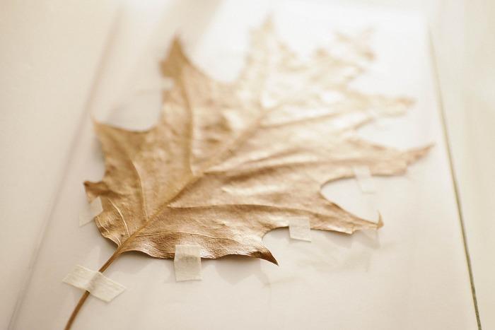 ナチュラルでシャビーな雰囲気を出したいなら、「白いテープ」がオススメ。 葉っぱ1枚でも、こんなに素敵な雰囲気が・・・。