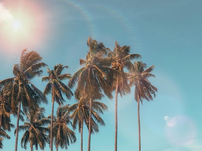 暑い日でも心地いい気分に…♪ 夏に聴きたいミュージックリスト【8選】
