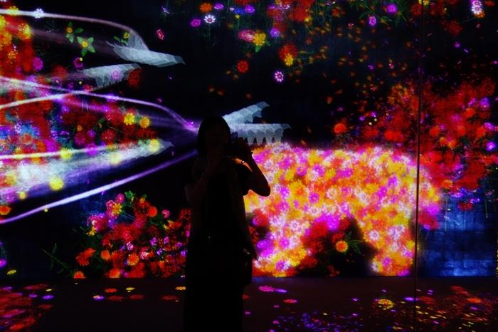 2018年にオープンしたばかりの、最先端のデジタルアートが楽しめるミュージアム。ただ鑑賞するだけでなく、アートの中に入ったり、アスレチックで体を動かすこともできる、体感型の施設です。