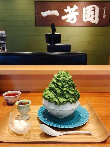 """「宇治抹茶氷エスプーマ仕立て""""亀""""」は、2種類の抹茶をブレンドしたことで、甘さと苦味がちょうど良いバランスに。さらに甘党の方には、""""あま亀""""というメニューも。"""