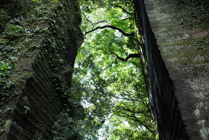 切り立った石の間を通ると、木々の間から青空が見えます。まるでジブリ映画の中に迷い込んだような不思議な気分に。