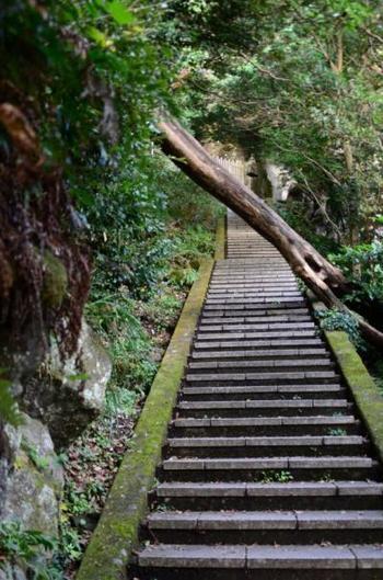 JR内房線の浜金谷駅から歩いて10分ほどで、登山道に到着。登山道は大きく分けて2つのルートがあり、どちらも3時間程度で往復できます。階段もあり整備されていますが、ところどころ苔が生えているなど滑りやすい場所もあるので注意が必要です。