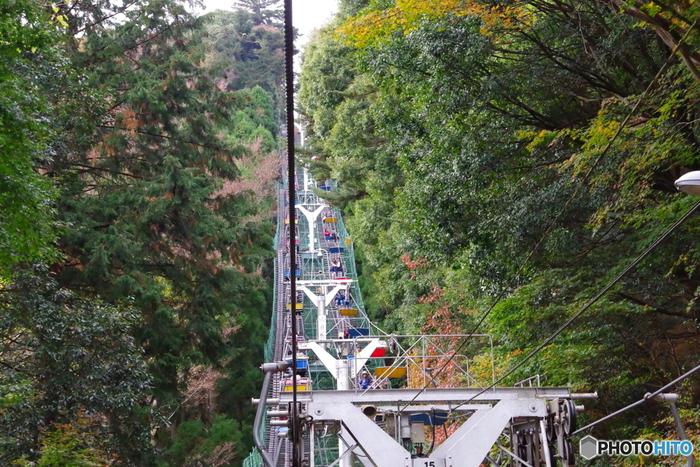 途中までリフトやケーブルカーも使える気軽さも良いですね。写真のリフトは、高尾山の大自然を見下ろしながらの空中散歩を楽しめますよ。