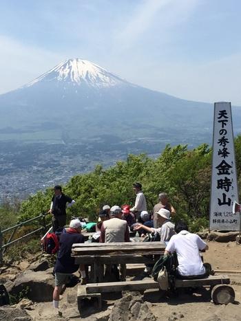 山頂から眺める富士山は、その雄大な姿に圧倒されます。標高が1212mで、今までご紹介した山の中では1番の高さ。ところどころ足場が悪いところもありますが、登った先の絶景は感動すること間違いなしです。無理せずゆっくり登るように心がけてくださいね。