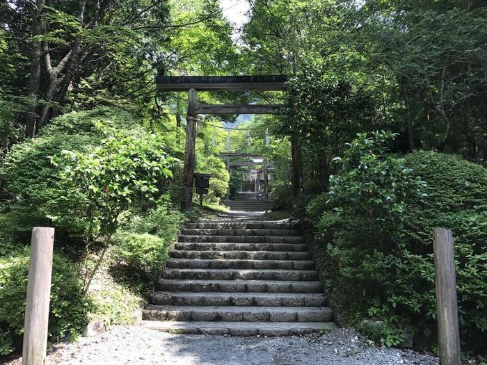 箱根にある「金時山」は、金太郎伝説が残る初心者に大人気の登山スポット。大きく分けて5つのルートがありますが、おすすめは新宿駅から高速バスで乙女峠バス停まで行き、そこから山頂を目指すルート。乙女峠から山頂までの所要時間は、約2時間ほどが目安です。