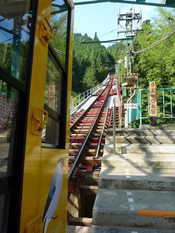東京都青梅市にある「御岳山(みたけさん)」は、標高929mの山。古くから山岳信仰の対象となっていて、パワースポットとしても知られています。山頂までは、麓からケーブルカーで「御岳山駅」まで行き、そこから歩きます。