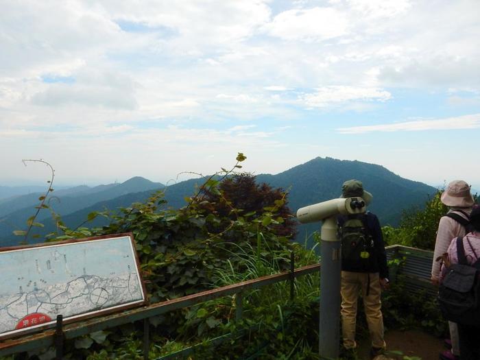 群生地を抜けると山頂です。眼下には関東平野や房総半島まで見渡せ、開放感抜群です。晴れた日はスカイツリーが見えることも。