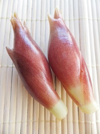 独特の風味が特徴の茗荷は、夏のさまざまな料理の薬味としても活躍する食材のひとつ。α-ピネンという精油成分による香りが、発汗や血液循環などを促します。また、辛味成分には強い抗菌作用があるので、風邪予防にも効果的とされる食材です。