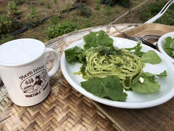 ガーデン内を一望できるオープンカフェテラス式のレストランでランチもいただけます。自社農園のフレッシュハーブをふんだんに使った料理が中心で、こちらは人気メニューのひとつ「コイバジ」。新鮮なバジルペーストで和えたパスタは、口いっぱいに爽やかな香りが広がります。