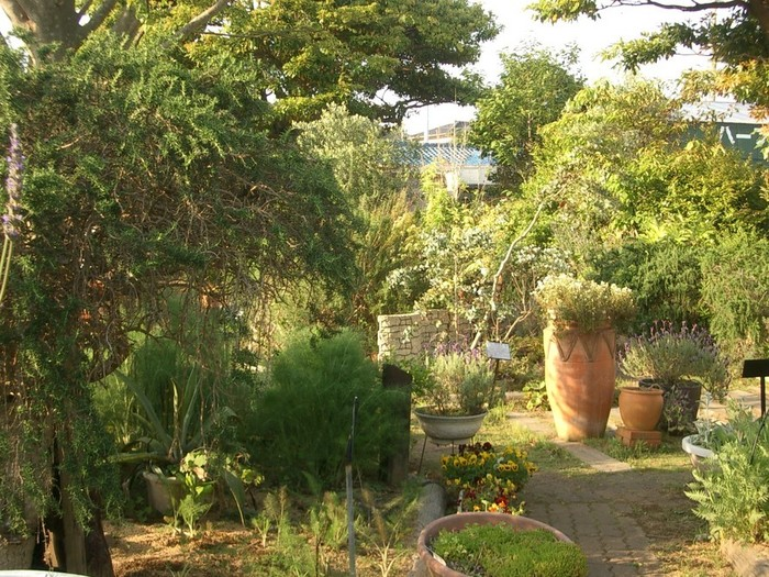 ハーブを中心に、果樹や季節の草花、山野草など約300種が植えられたガーデンは、森の中にいるような心地よさを感じます。ハーブにそっと顔を近づけて、香りの違いを楽しむのもおすすめ。