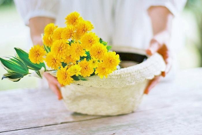 6月から9月にかけて出回るヒメヒマワリ。鮮やかな黄色が元気いっぱいの雰囲気を醸し出します。スプレー咲きなので、一本ずつカットして、いくつかの一輪挿しにアレンジするのも素敵。夏の暑さに強いお花のひとつです。