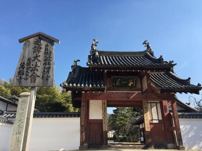 京都宇治にある煎茶道の祖・売茶翁(ばいさおう)ゆかりの寺として知られる「萬福寺」。建物様式、仏像、儀式作法に至るまですべてが中国風で日本のお寺とは少し違った様相をしています。それは明の時代に中国から来た高名な僧侶・隠元隆琦(いんげんりゅうき)が開山したからなんだとか。日本のお寺との違いを楽しむのもいいかもしれませんね。