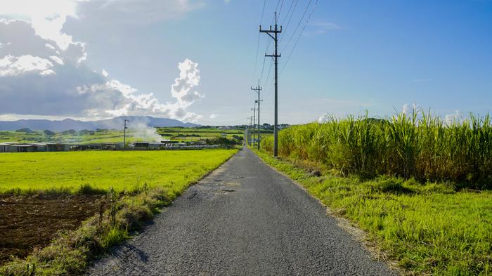 シュガーロードとは、小浜島集落から島の南西部へ向かって真っすぐに伸びる一本道のことです。道の脇にはその名の通りサトウキビ畑が広がっており、のどかで牧歌的な雰囲気が漂っています。また、この道は、ちゅらさんのロケが行われた場所でもあります。