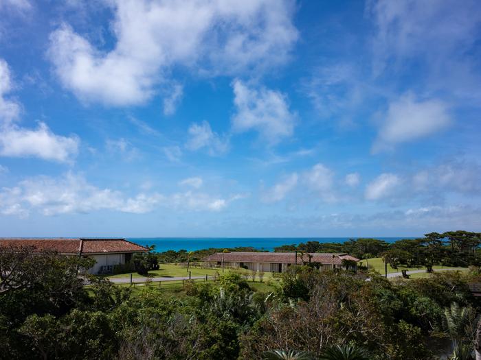 透き通る青い海に囲まれた八重山諸島の楽園 ~小浜島でのおすすめ観光スポット~
