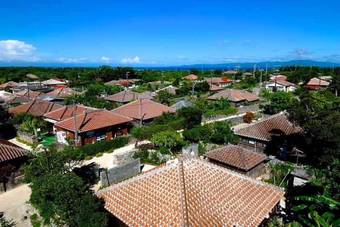 """竹富島の家は、赤瓦屋根の平屋で、家の周りは石垣で囲まれています。竹富島の集落では、見渡す限り、私たちがイメージする""""昔ながらの沖縄の原風景""""が広がっています。"""