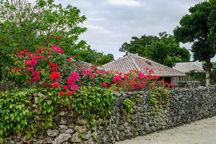 竹富島の集落は、そのほとんどが一般の民家で同じような外観をしています。そのため、集落内を歩いて散策していると『地図を見ていても自分がどこにいるのか分からなくなってしまう』という不思議な感覚を覚えます。
