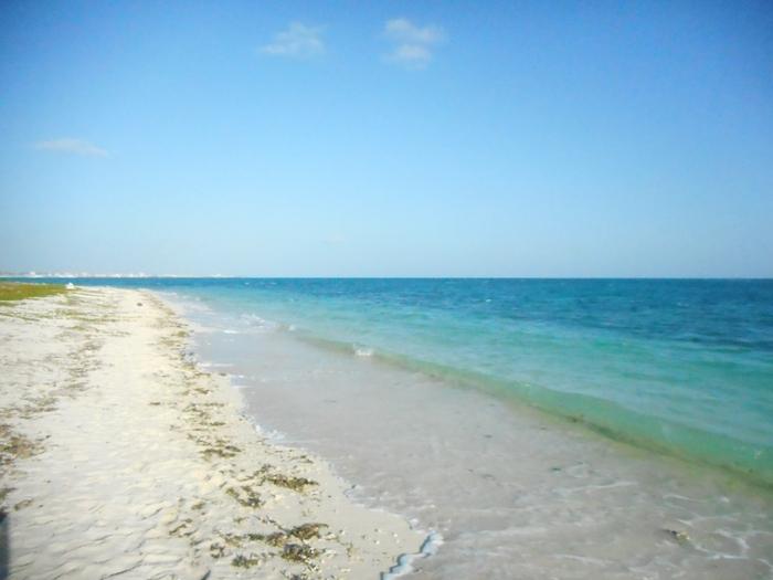 アイヤル浜は、竹富郵便局の前の道を東にまっすぐ進んだ場所に位置するビーチです。潮の流れが速いため、残念ながら遊泳は禁止されています。しかし、ここを訪れる人が少ないうえに、広々としているため、静かに過ごしたい人におすすめの穴場です。