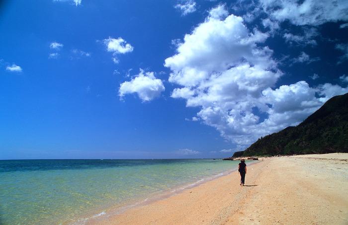 南風見田の浜(はえみだのはま)は、西表島の海岸線上を走る県道の終点「豊原」付近にある遠浅のビーチです。陽射しを浴びて輝く白砂、透き通る青い海、抜けるような青空、すぐ近くまで迫る亜熱帯の原生林が織りなし、南風見田の浜では絵画のような景色が広がっています。