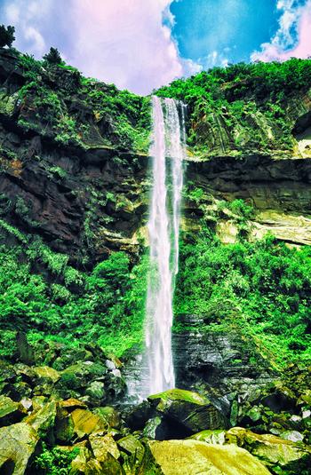 西表島北部に位置する標高440メートルのテドウ山の北麓には、落差約54メートルのピナイサーラの滝があります。この滝は沖縄県では最大の落差を誇ります。轟音と共に白いしぶきを散らしながら、垂直に流れ落ちる様は迫力満点です。