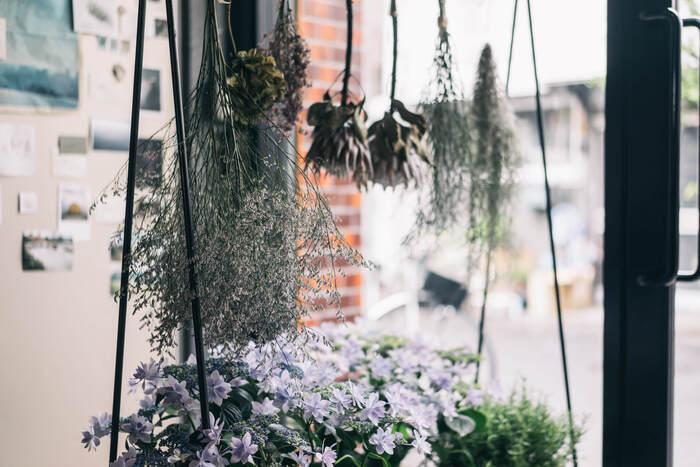 一般的なのが、茎があるお花ですよね、ではどうやって「乾燥」させればよいでしょうか。  初心者さんにおすすめなのは、お花を逆さまに吊っておくこと。数本束ねている状態でも良いですし、1本1本で吊っても大丈夫。  大切なのは場所。すこし日陰となる、風通しのよいところがよいですよ。