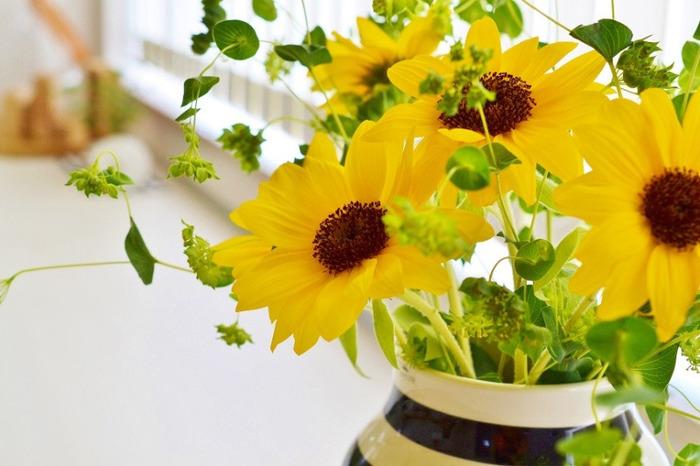 薄くてやわらかな花びらが何枚も重なっているのがよくわかるひまわり。不思議と微笑んでいるようにも見えます。大きめのケーラーオマジオにはたっぷりのブーケを生けて。どっしりしているので、丈が長めのお花でもひっくり返ってしまうことがありません。
