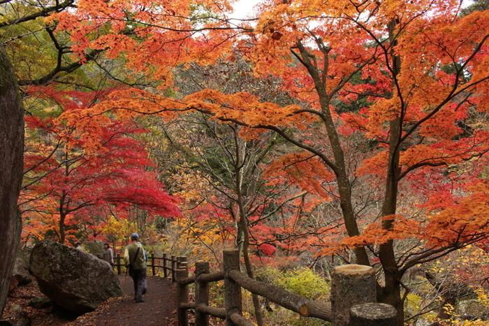昇仙峡の入口となっている長潭橋から覚円峰へは、渓谷沿いによく整備された遊歩道が敷かれています。四季折々で美しい景色を見せてくれる荒川沿いの渓谷美を眺めながら遊歩道を歩く気持ち良さは格別です。
