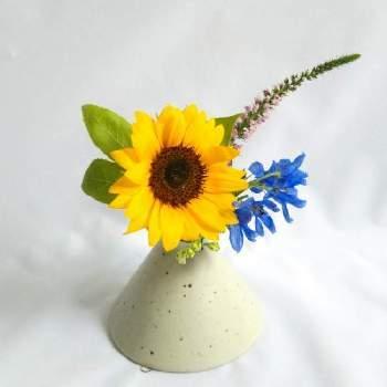 まるでお山のようなラインが可愛らしい花器に、ひまわりを小さく飾っています。きゅっと口がすぼまっているので、お花の方向も決めやすく、ひまわりのように正面を作りたいお花にぴったりです。