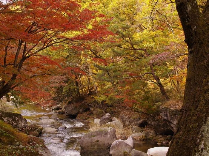 昇仙峡は、山梨県の県庁所在地が置かれている甲府市の北部に位置する渓谷です。気が遠くなるほどの歳月をかけて荒川によって削り取られて形成された断崖絶壁、巨岩、奇岩と豊かな水の流れが織りなし、昇仙峡では独特の景観美が広がっています。