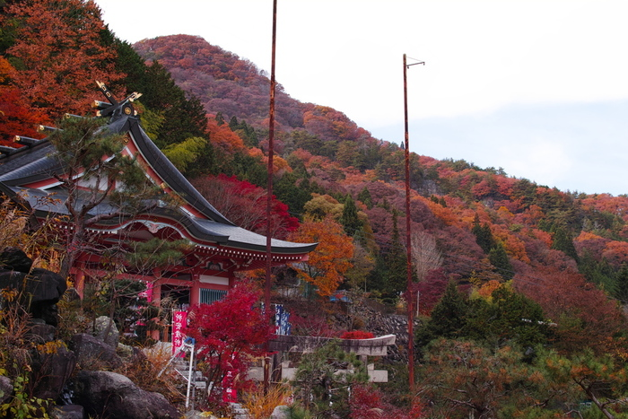昇仙峡ロープウェイの仙娥滝駅近くに鎮座する夫婦木姫の宮は、子宝、縁結び、夫婦円満といった御利益で有名なパワースポットです。