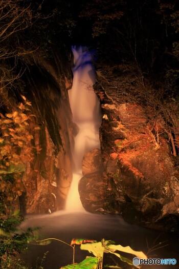 仙娥滝では、季節によっては夜間のライトアップが行われます。ライトを浴びて輝きながら浮かび上がる白い水瀑は、日中とは異なる幻想的な雰囲気を醸し出しています。