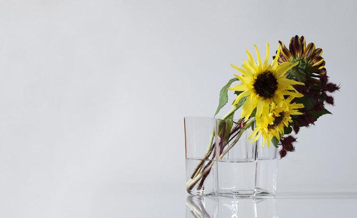 すらりとした茎のラインも美しいひまわり。ガラス花器なら、茎の様子もよく見えます。